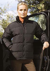 Holkam Ladies' Padded Jacket